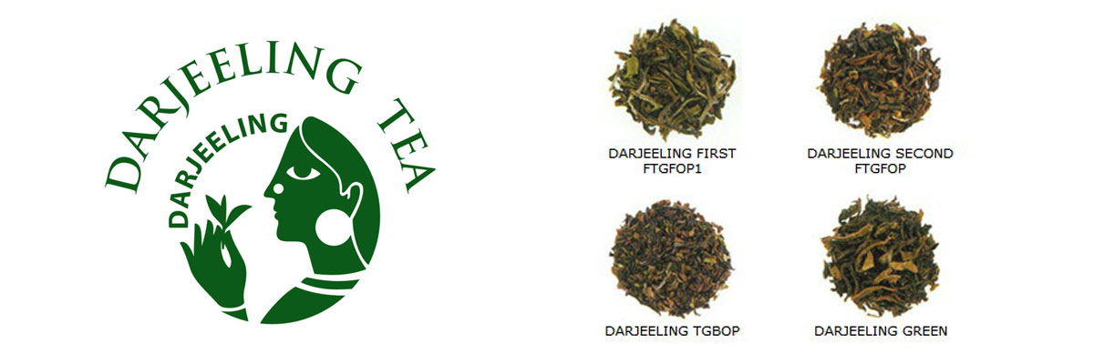 Darjeeling Tea By Lalchand Babulal / Berlia Gold / Tea Traders in Kolkata India